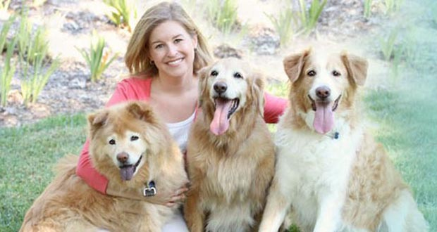 Santa Clarita Veterinarian Offers Tips On Traveling With Pets
